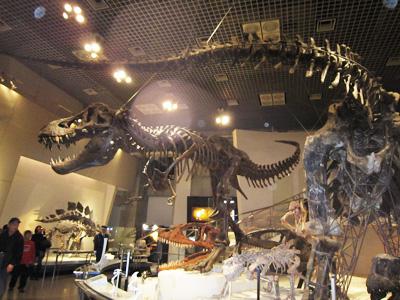 国立科学博物館(2)(21.10)